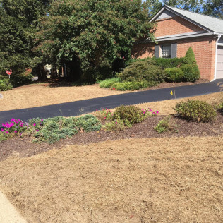 New Sod & Mulch Installation